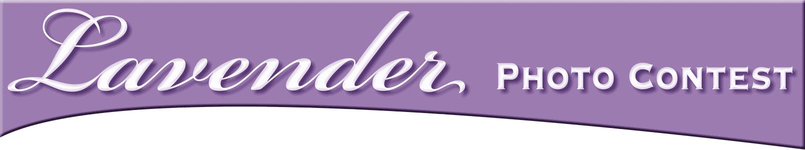 Lavender Photo Contest